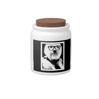 Ewok. Cute maltese with glasses Candy Dish