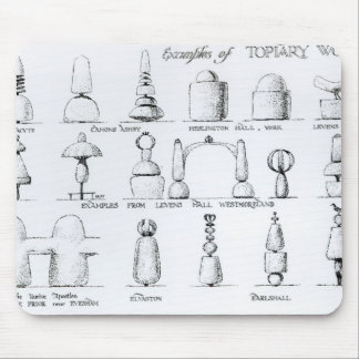 Examples of Topiary Work, 1902 (engraving) (b/w ph Mouse Pad