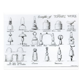 Examples of Topiary Work, 1902 (engraving) (b/w ph Postcard