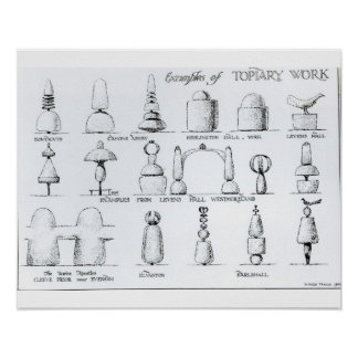 Examples of Topiary Work, 1902 (engraving) (b/w ph Poster