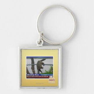 Excaping Turtle Silver-Colored Square Key Ring
