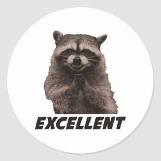 Excellent Evil Plotting Raccoon Classic Round Sticker
