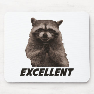 Excellent Evil Plotting Raccoon Mouse Mat