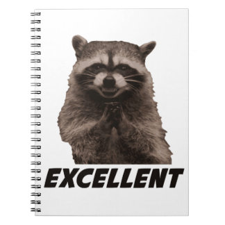 Excellent Evil Plotting Raccoon Notebooks
