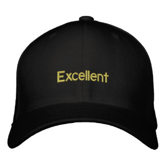 Excellent fantastic perfect and brilliant hat embroidered hat