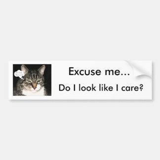 Excuse me..., Do I look like I care? Car Bumper Sticker