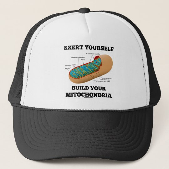 Exert Yourself Build Your Mitochondria Trucker Hat