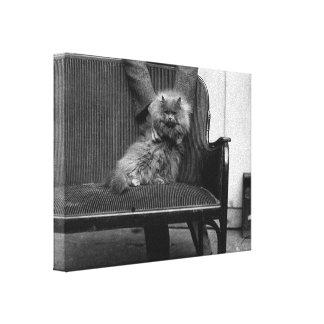 Exhibition Cat Club - Mondial 493 Canvas Print