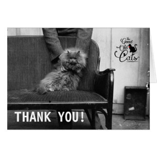 Exhibition Cat Club - Mondial 493 | Thank You Card