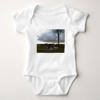 Exmoor Ponies Baby Bodysuit
