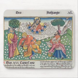Exodus 16 13-22 God provides quail and manna to th Mouse Mat