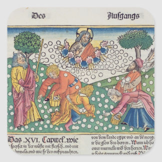 Exodus 16 13-22 God provides quail and manna to th Square Sticker