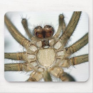 exoskeleton spider mouse mat