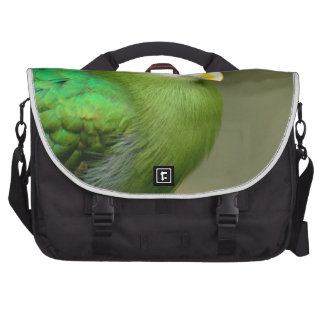 Exotic Bird Bags For Laptop