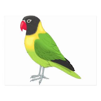 Exotic Bird Postcard