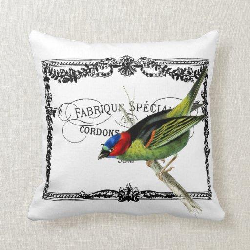 Exotic Bird, Vintage Typography Pillow