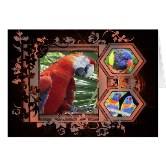 Exotic Birds Greeting Card