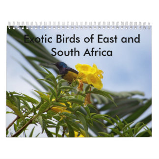 Exotic Birds of East and South Africa Calendar