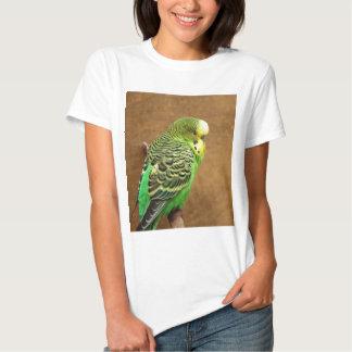 Exotic Budgie Bird Shirts