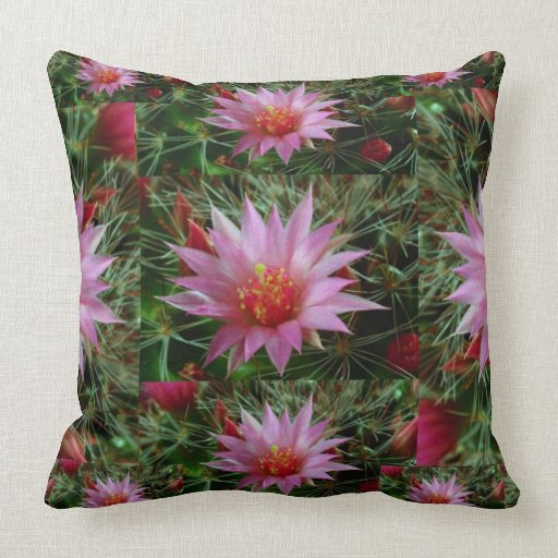 EXOTIC Cactus Flower : Greet Thank n Welcome Pillows