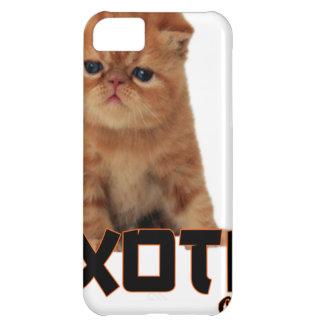 exotic cat breeds iPhone 5C case