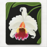 Exotic Cattleya Orchid Flower Mouse Pad