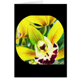 Exotic Cymbidium Orchid Blank Greeting Card
