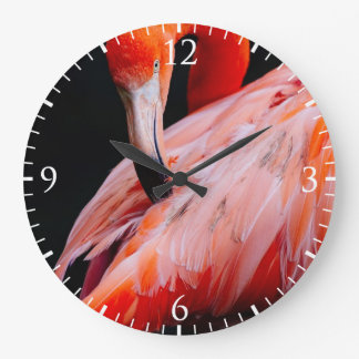Exotic Flamingo Portrait Large Clock