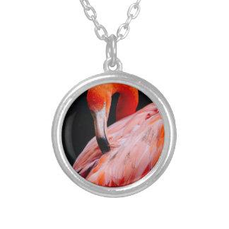 Exotic Flamingo Portrait Pendant