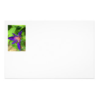 Exotic flower stationary stationery paper