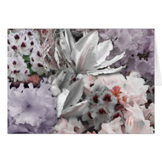 'Exotic Garden' - Blank Greetings Card