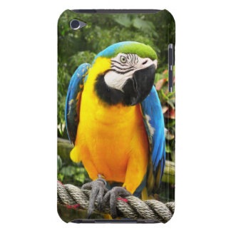 Exotic Macaw Parrot Case-Mate iPod Touch Case