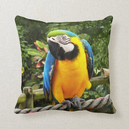Exotic Macaw Parrot Throw Pillows