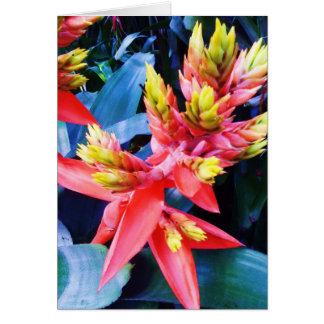 Exotic Orange Yellow Beautiful Flower Card