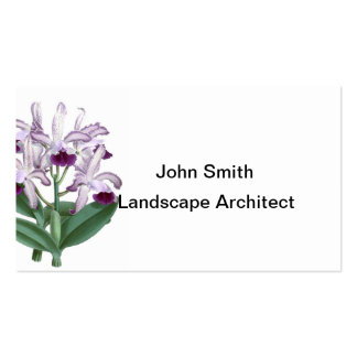 Exotic Orchid Plant Purple Flowers no 4 Business Card