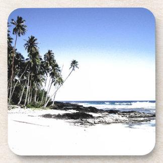 Exotic Palm Trees & Paradise Beach Coasters