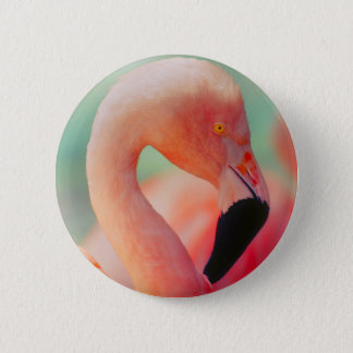Exotic Pink Flamingo Bird Button