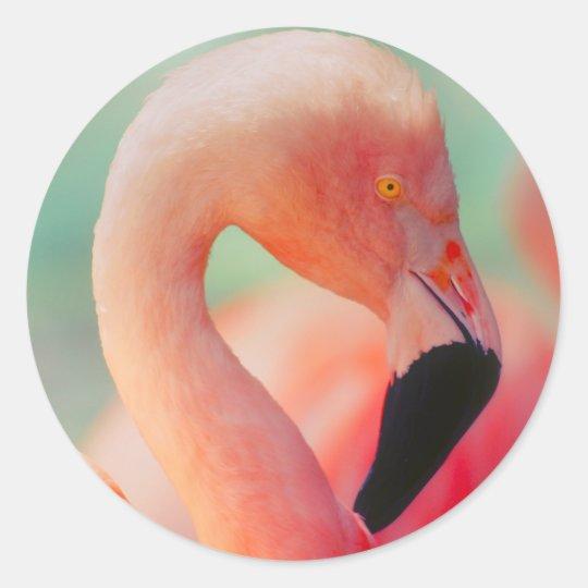 Exotic Pink Flamingo Bird Stickers