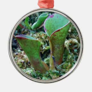 Exotic Plant Karnivoren Ornament