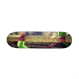 Exotic Plant Skate Boards
