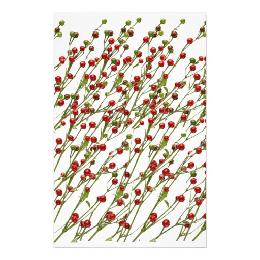Exotic Red Chillies -  Super Chef Collection Stationery Paper
