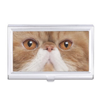 Exotic Shorthair (2,5 years old) Business Card Holder