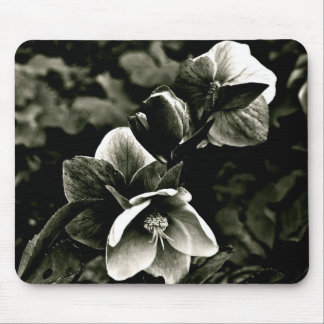 EXOTIC TREE FLOWERS IN BLACK AND WHITE MOUSE MAT