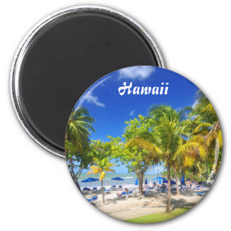 Exotic view from Hawaii Magnet