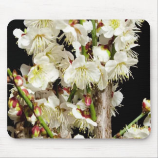 Exotic White Flower Bunch by Branch Romance Gifts Mouse Pad