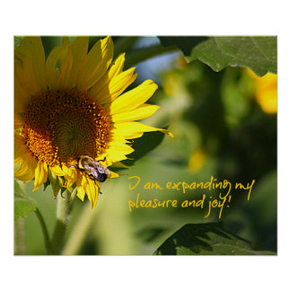 Expanding Pleasure & Joy Sunflower Poster