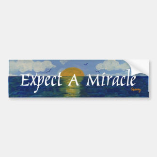 Expect A Miracle Bumper Sticker