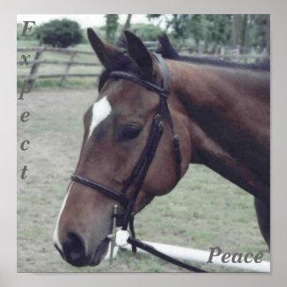 Expect Peace Print
