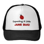 Expecting A Little June Bug Maternity