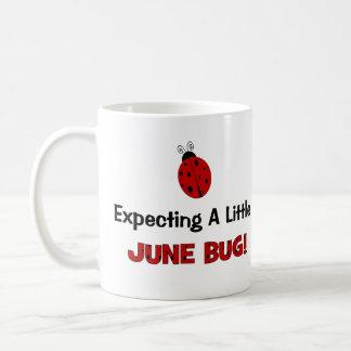 Expecting A Little June Bug Maternity Basic White Mug